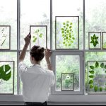 botanický štýl v interiéri: zelený herbár v prehľadných rámoch