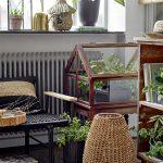 botanický štýl v interiéri: Interiér so zoskupením rastlín na parapete, v miniskleníku či policiach