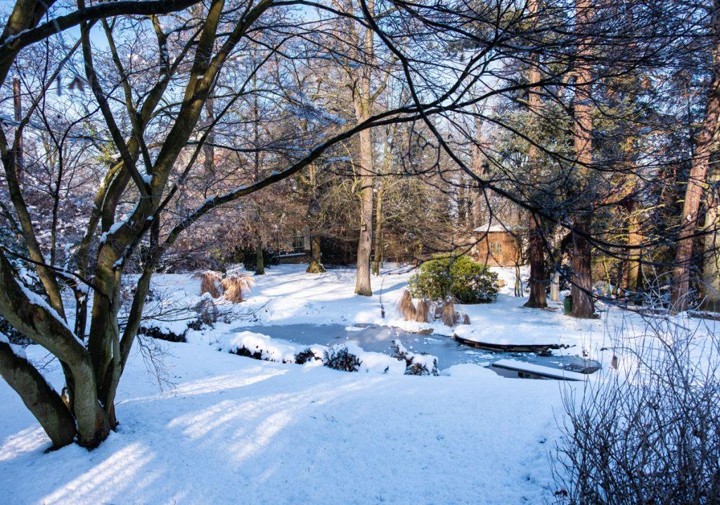 zamrznuté kúpacie jazierko s dreveným môlom a skokanskou lávkou v storočnej záhrade