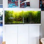 detail interiéru s akváriom a modernými obrazmi