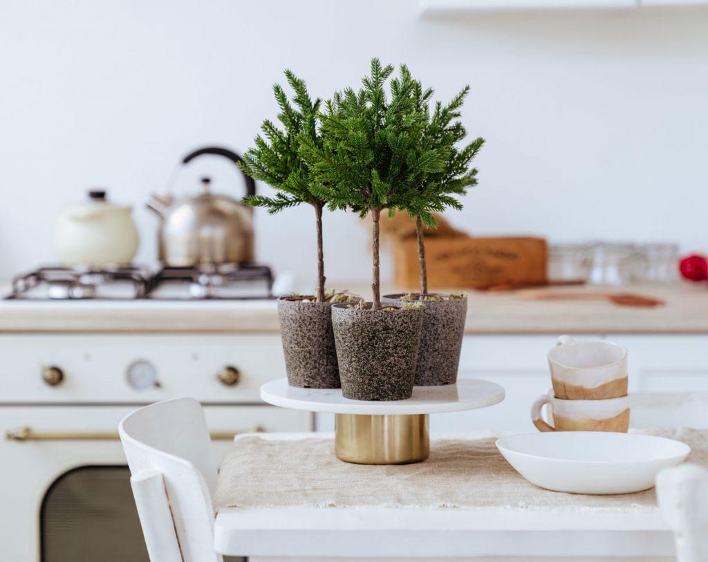 Trojica miniatúrnych stromčekov v kvetináčoch na stojane s metalickým efektom