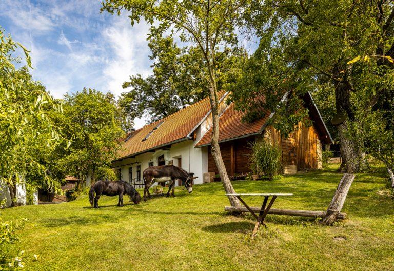Najobľúbenejšie interiéry roka 2020: romantická chalupa v Podbranči
