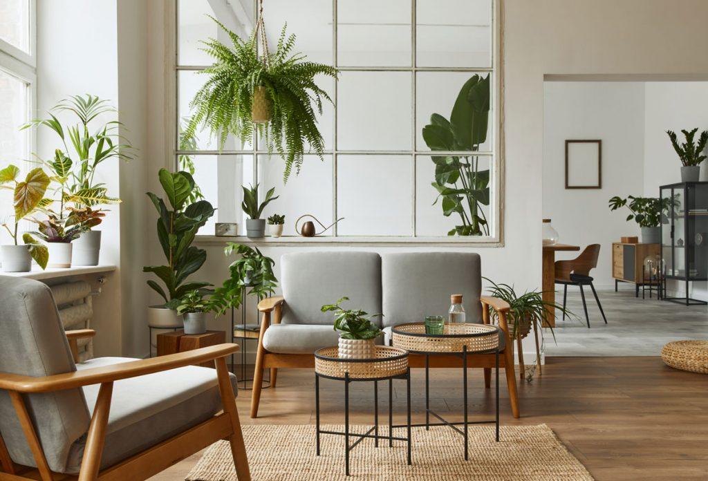 Nápady pre interiér v botanickom štýle: prírodne ladený interiér obývačky s izbovými okrasnými rastlinami
