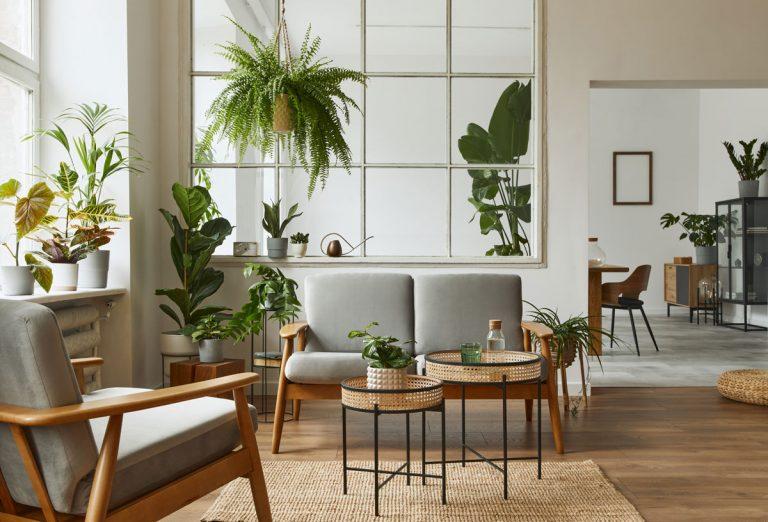 8 nápadov pre interiér v botanickom štýle