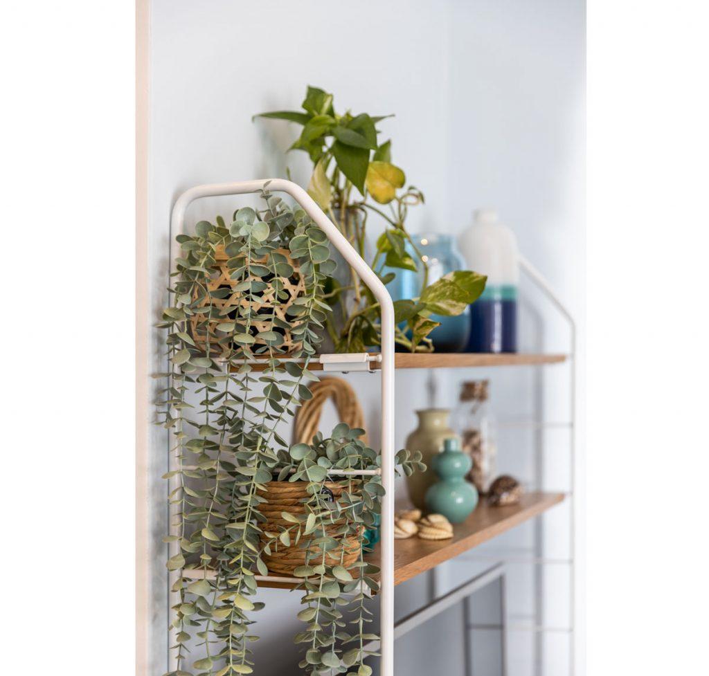 detail otvoreného kovového regálu s izbovými rastlinami, keramickými vázami a mušľami z dovoleniek