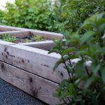 Vyvýšený zeleninový záhon