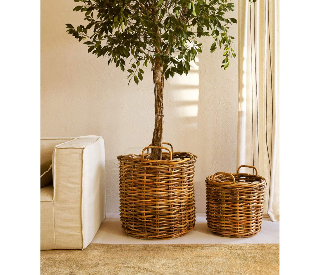 Ako upraviť nehnuteľnosť pred predajom: zeleň v interiéri