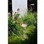 Papradia, trávy, gaury, echinacey tlačiace sa do priestoru chodníka aspevnenej plochy mestskej záhrady vo vnútrobloku