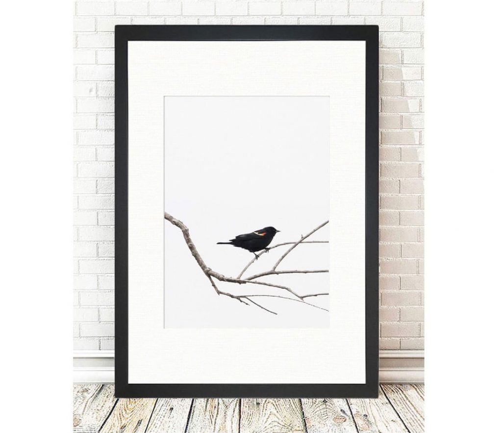 ako na minimalizmus v interiéri: jednoduchý obraz vtáka na konári