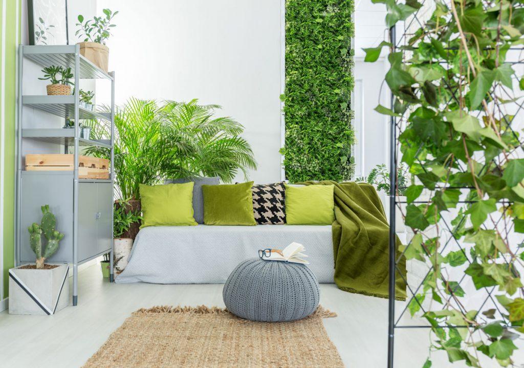 Ako si vytvoriť finančne nenáročnú vertikálnu záhradu?