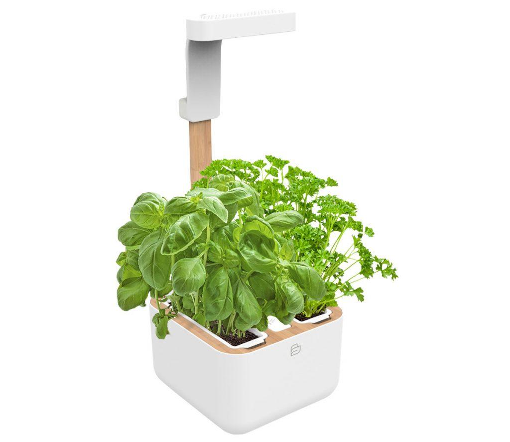 inteligentný kvetináč so samozavlažovacím systémom a LED osvetlením vhodný na bylinky pestované v interiéri