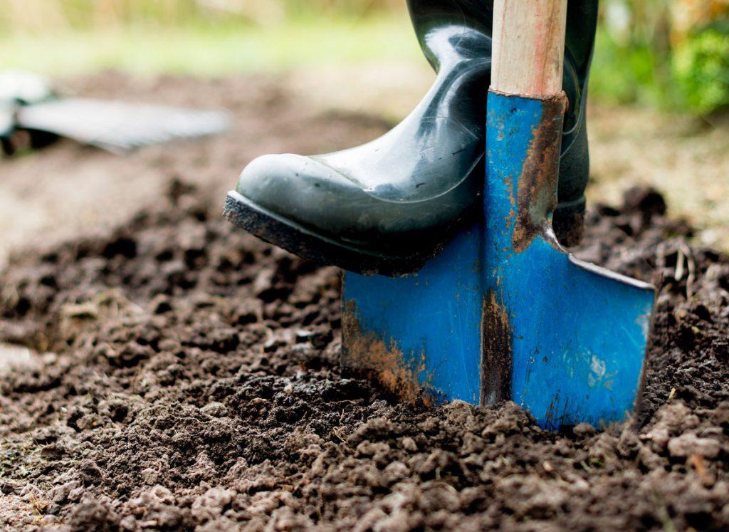 Ako zúrodniť pôdu