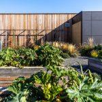 zeleninovo-ovocná časť záhrady umiestnená vo vyvýšených záhonoch pred drevostavbou rodinného domu