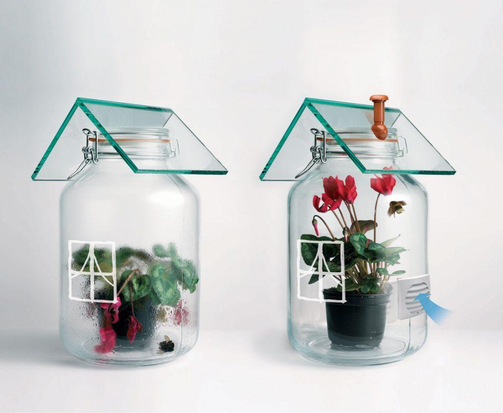 Ilustračná foto výmeny vzduchu v uzavretej sklenenej nádobe s kvetinou