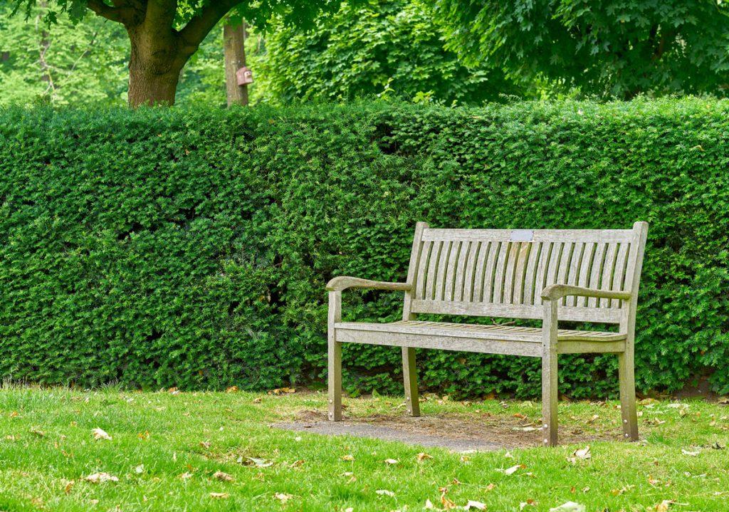 Záhrada so živým plotom