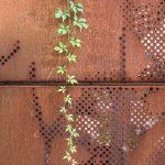 detail perforovanej brány z cortenu