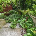časť átriovej záhrady v tieni s okrasnou výsadbou