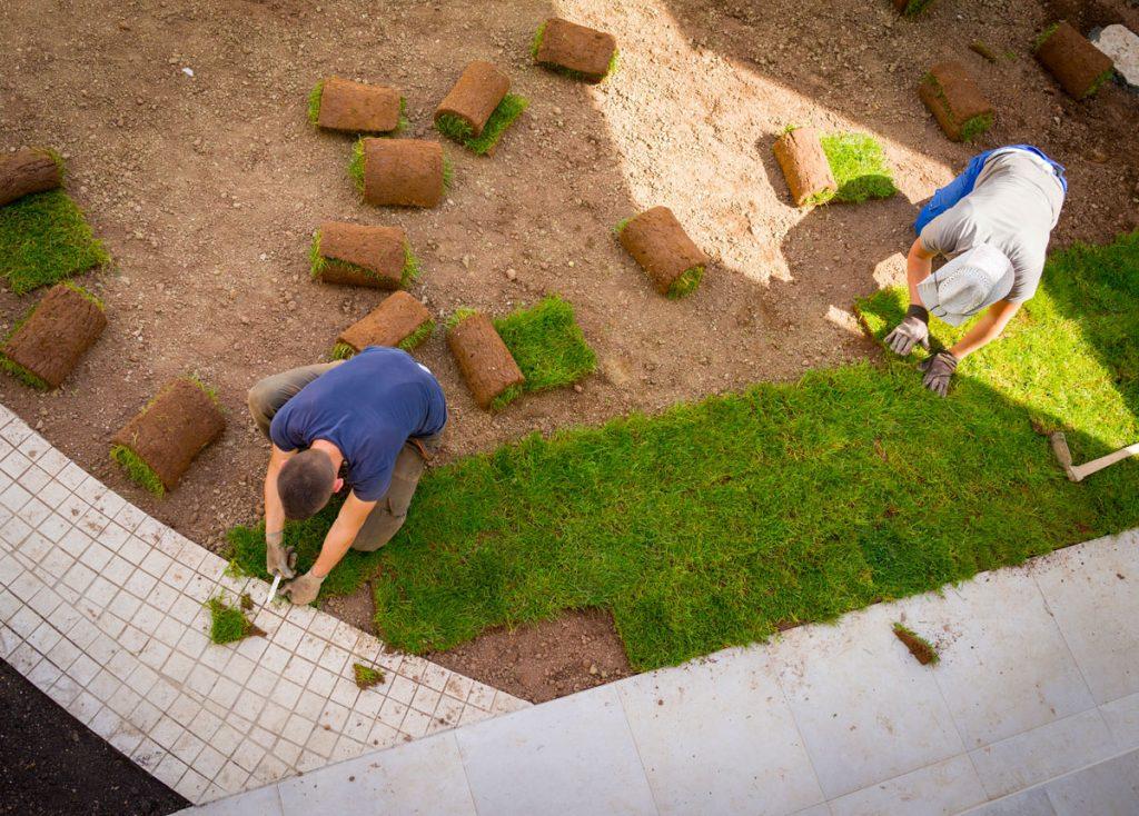 Svojpomocná pokládka kobercového trávnika