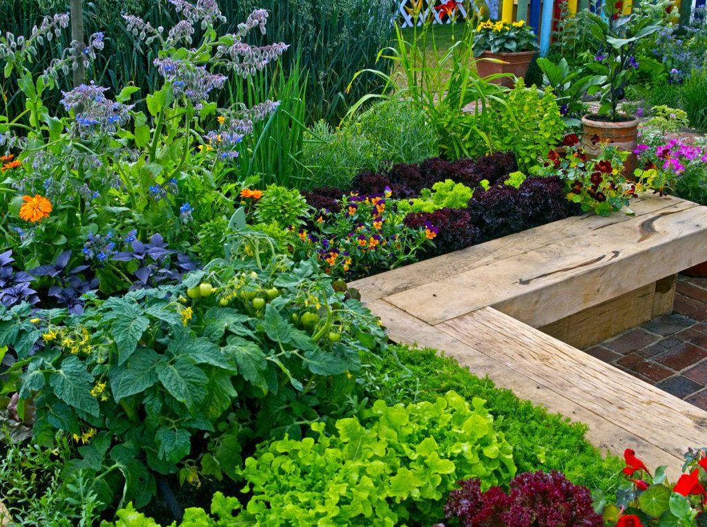 Vyvýšené záhony so zmiešanou výsadbou okrasných a úžitkových rastlín