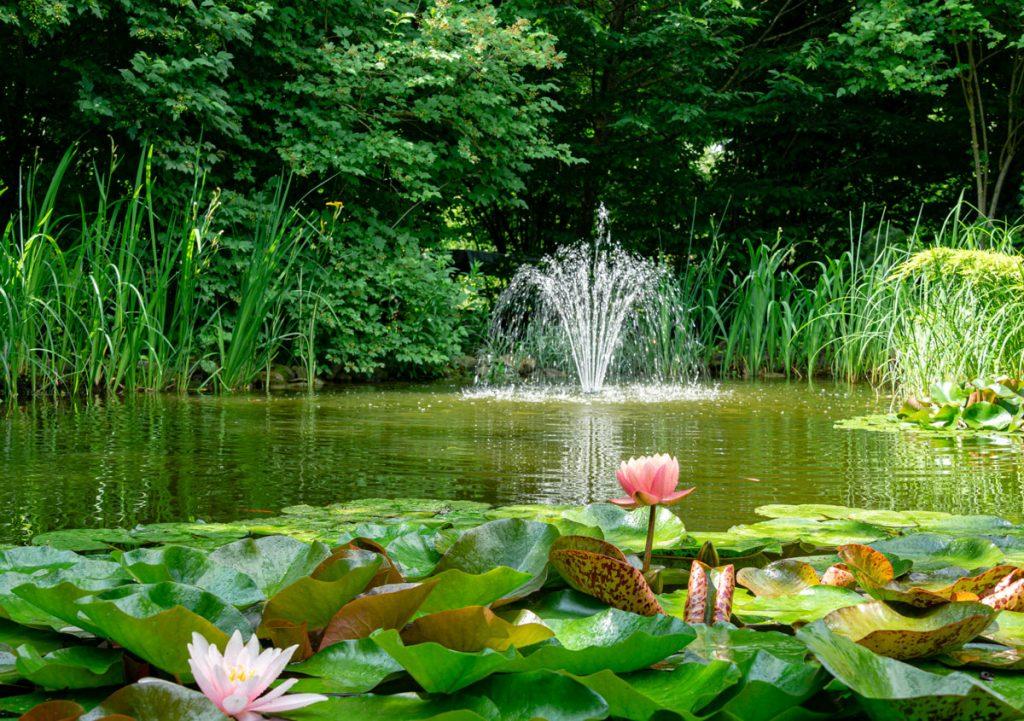 technika do záhradného jazierka: fontánkové čerpadlo