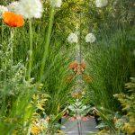zábradlie z tvrdeného skla odrážajúce trvalkové záhradné záhony