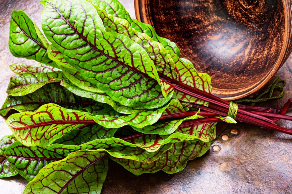 Štiavec – šalátová bylinka, ktorú si obľúbite pre jej dekoratívny vzhľad aj sviežu chuť