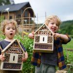 Hmyzí domček: kam umiestniť, čím ho vyplniť