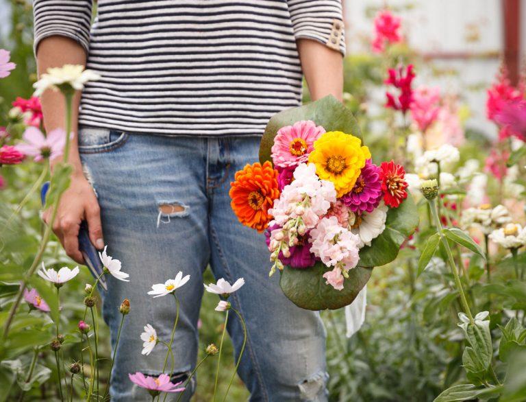 Kytice z vlastnej záhrady. Ktoré druhy kvetov si môžeme vysadiť na rezanie?