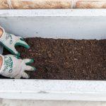 Výsadba zelenej steny z paviniča: naplnenie nádoby substrátom