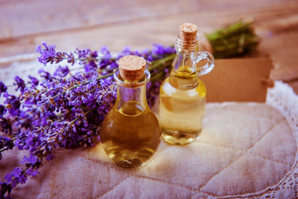 Levanduľa a oleje ako repelenty proti hmyzu