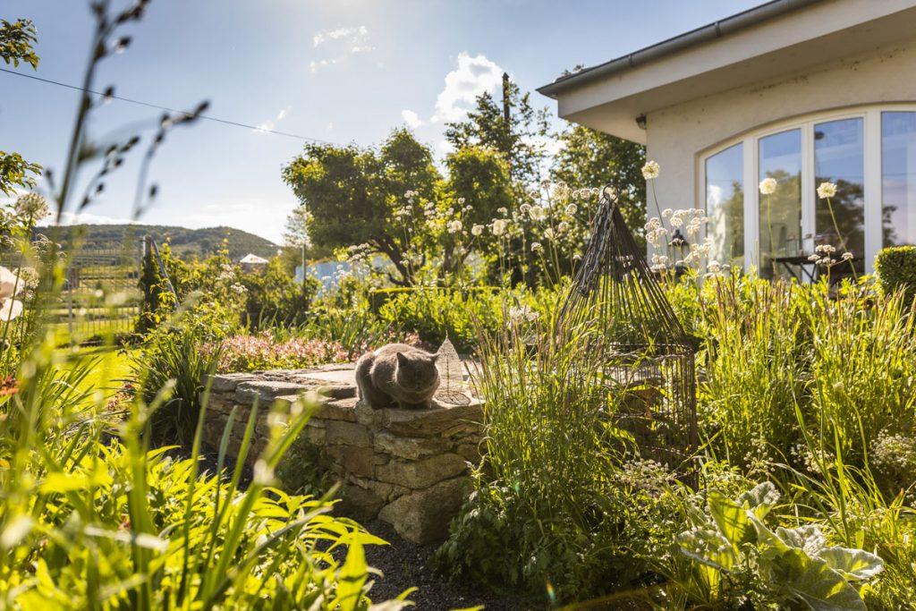 rodinný som s okrasnou záhradou s vysokými bielymi okrasnými cesnakmi, kamenným múrikom a kovovou vtáčou klietkou, ktorá zakrýva šachtu pre závlahový systém