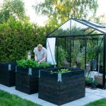 Záhrada so skleníkom s čiernym rámom a vyvýšenými záhonmi