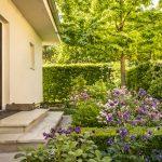 pozemok rodinného domu lemovaný živými plotmi z hrabov, brečtanu a hlohyne a so záhonmi modrých a ružových orlíčkov