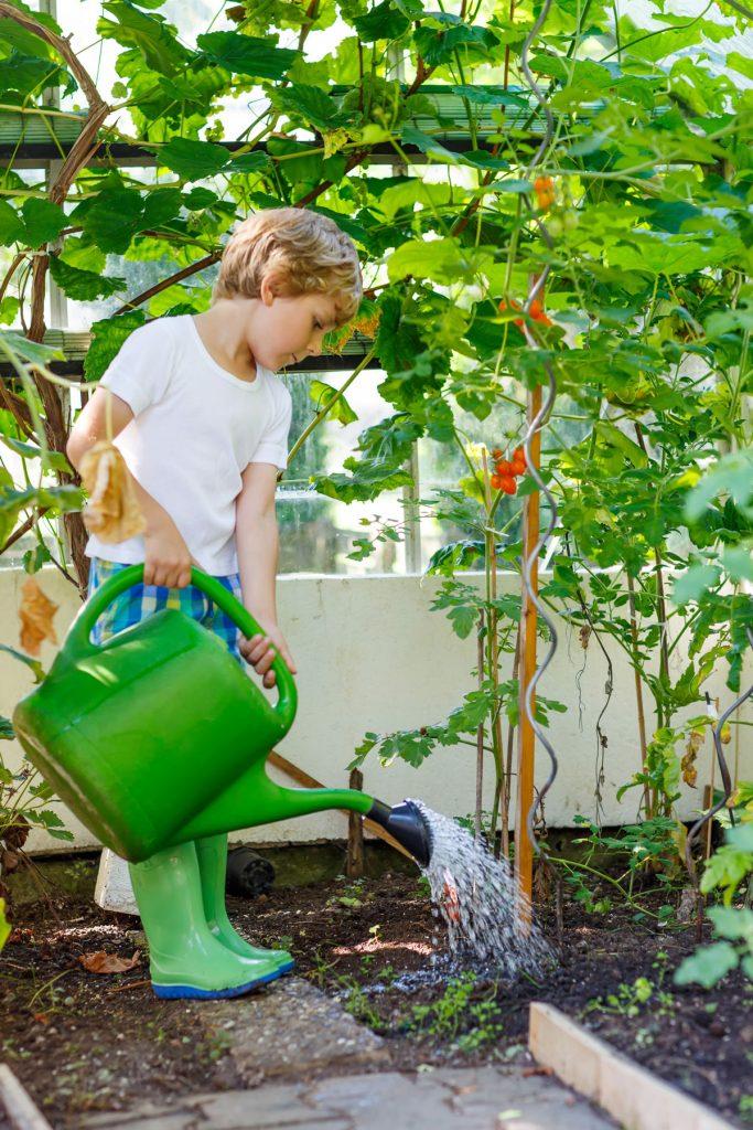 Dieťa polieva záhradu