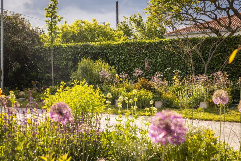okrasné trvalkové a cibuľové záhony vo verejnej záhrade