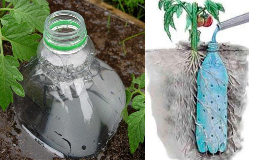 Plastová fľaša z nápoja umiestnená v zemi ako zásobáreň vody pre rastliny