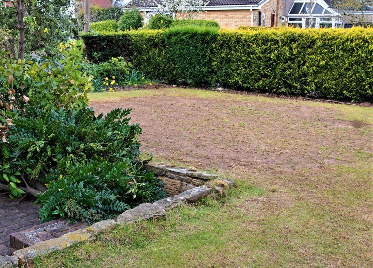 Ako si poradiť so suchými miestami v trávniku?