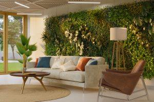 Zeleň priamo na stene či v obraze? Zatraktívnite si priestor vertikálnou záhradou