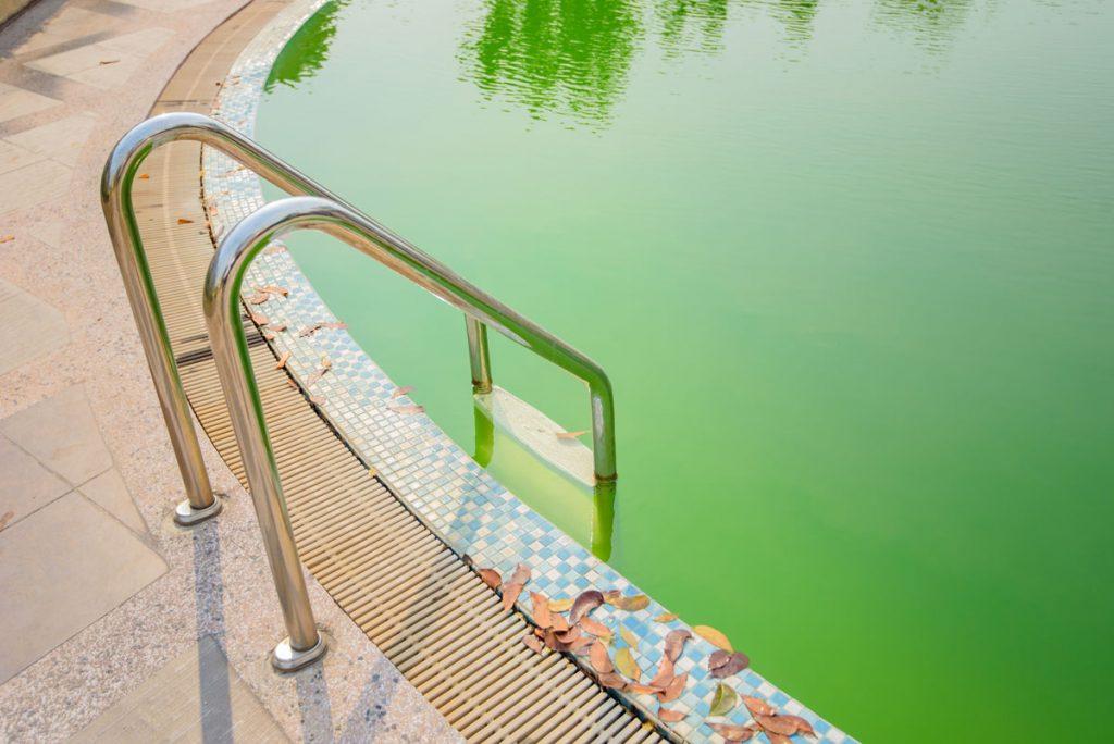 Štyri typy znečistenia bazénovej vody a ako si s nimi poradiť