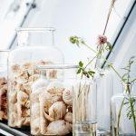 Polica so sklenenými vázami so živými kvetmi a sklenenými nádobami s mušľami