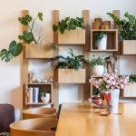 jedálenský kút so stolom s dizajnovými retro stoličkami a nástennými otvorenými policami s kvetináčmi s množstvom izbových kvetov