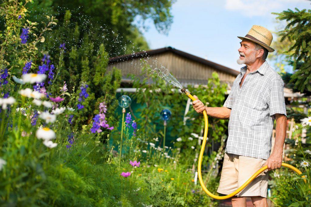 Praktický manuál zalievania záhrady alebo Tipy, ako šetriť vodu