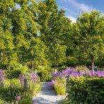 Okrasné záhony so štrkovými chodníkmi v záhrade