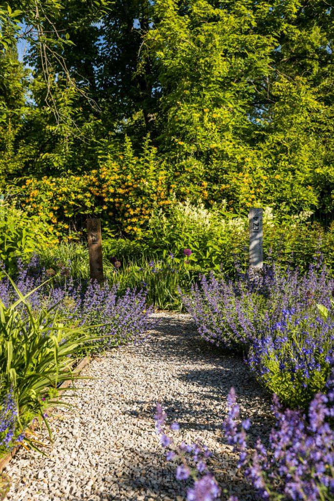 Chodník s trvalkovými záhonmi a okrasnými drevinami v univerzitnej záhrade v Nitre