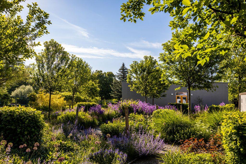Návšteva Interaktívnej a experimentálnej záhrady v Nitre. O jej cieľoch, študentoch a klimatických zmenách