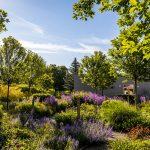 Zmiešaná výsadba v Interaktívnej a experimentálnej záhrade v Nitre