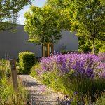 Trvalkové kvetinové záhony, živé ploty a listnaté stromy v Interaktívnej a experimentálnej záhrade v Nitre